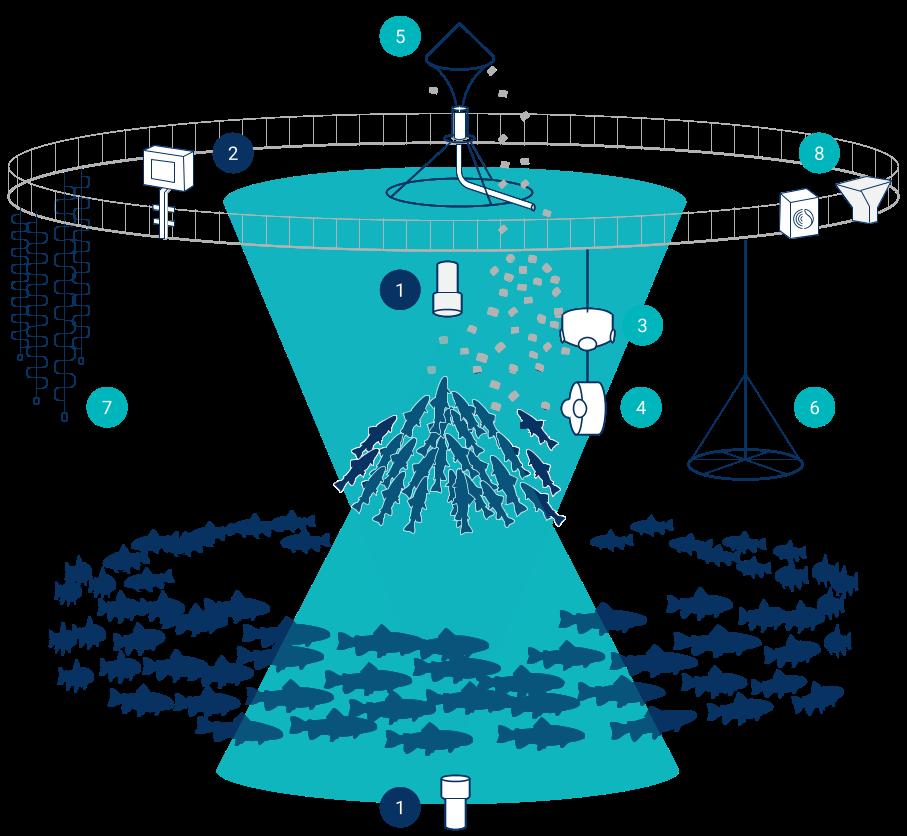 Bluegrove solutions